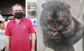 Kayıp kedisinin başına koyduğu ödülü 2 katına çıkardı
