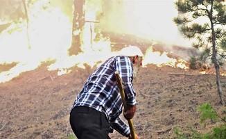 Binlerce Denizlili orman yangınları için seferber oldu