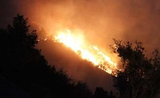 Buldan'da yerleşim yerine yaklaşan yangın devam ediyor