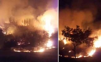 Buldan'da geceyi aydınlatan alevler kontrol altına alındı