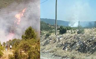 Cankurtaran'da yerleşim yerine yakın alanda orman yangını çıktı