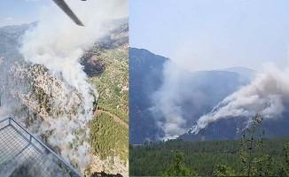 Denizli'nin Köyceğiz sınırına yakın alanda orman yangını başladı