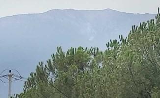 Honaz'da orman yangını çıktı