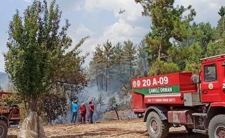Acıpayam'da orman yangını hızlı müdahaleyle söndürüldü