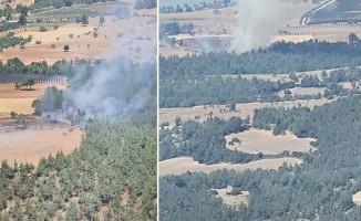 Orman yangını vatandaş ve ekiplerin müdahalesiyle söndürüldü