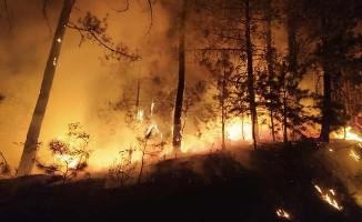 Ormanlık alandaki yangın kısa sürede kontrol altına alındı