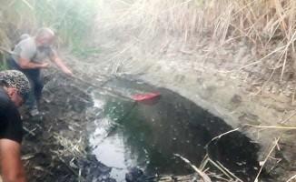 Suyu biten göletten 4 bin balığı kurtardılar