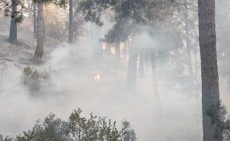 Tavas'taki yangın kısmen kontrol altına alındı