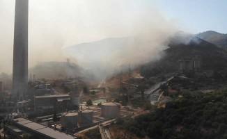 Türkiye'yi diken üstünde tutan yangında alevler termik santrali böyle sardı