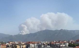 Valilik Tavas'taki yangınla ilgili açıklama yaptı