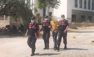 Pamuk tarlasında uyuşturucuyla yakalanan şüpheli tutuklandı