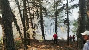 Buldandaki 2. orman yangını da söndürüldü